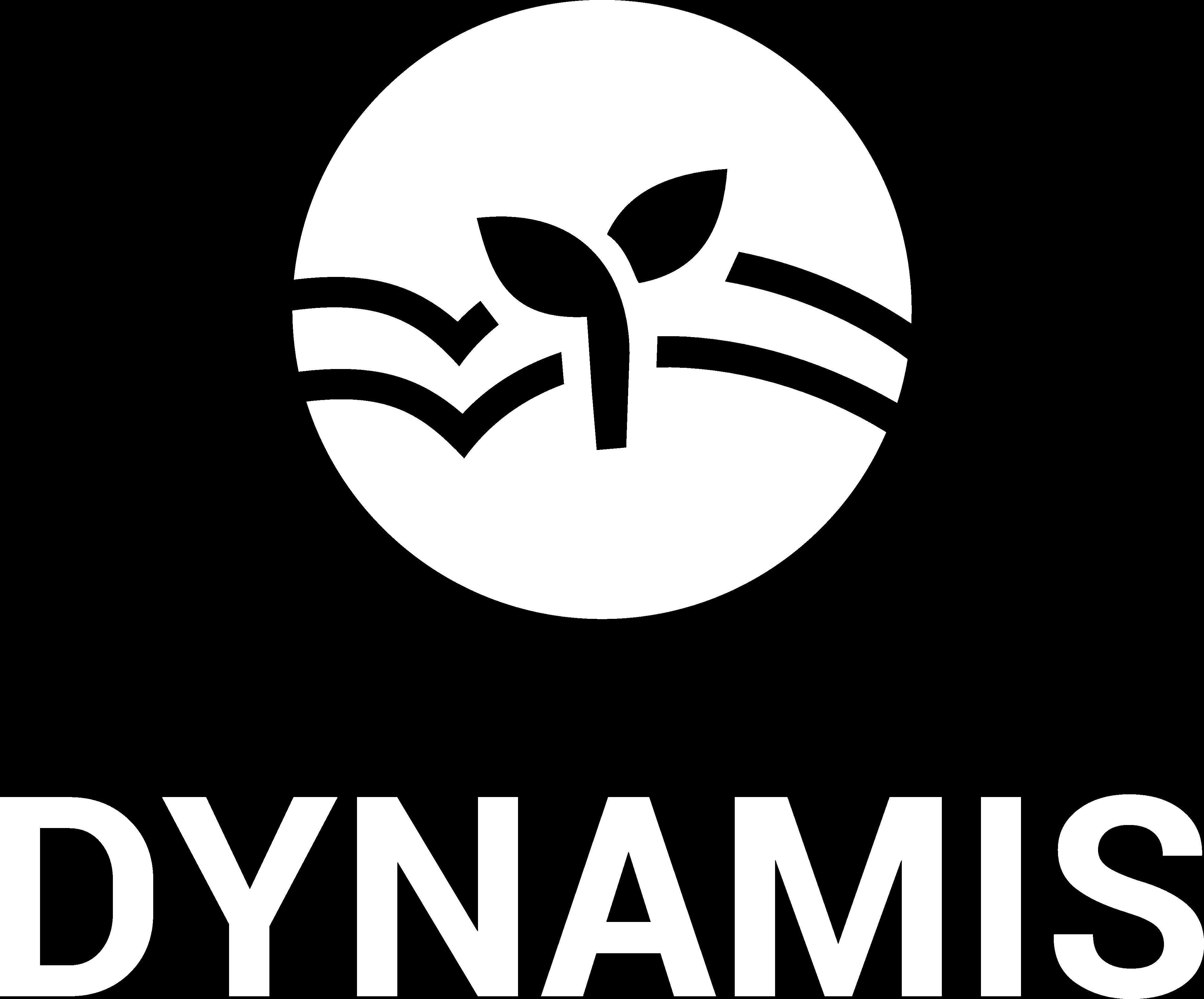 Dynamis e.V.